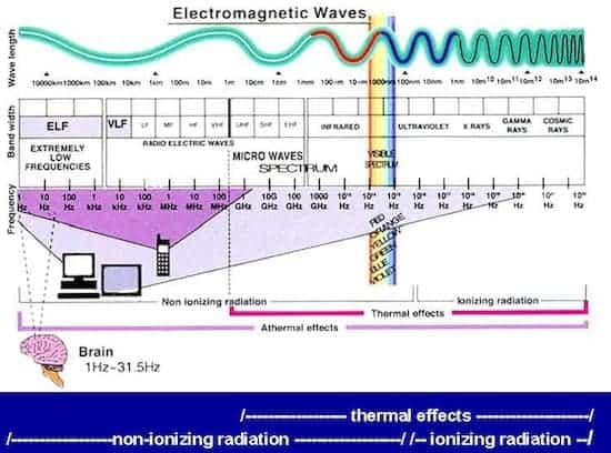 EMF Effect on Brain