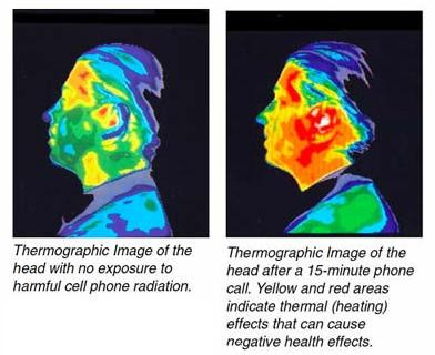 Thermographic of EMF Effects
