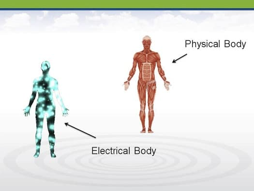 Electromagnetic Fields and The Body