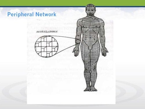 Peripheral Network - Electromagnetic Fields