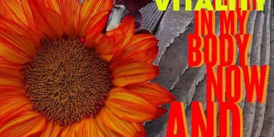 I Am Vitality