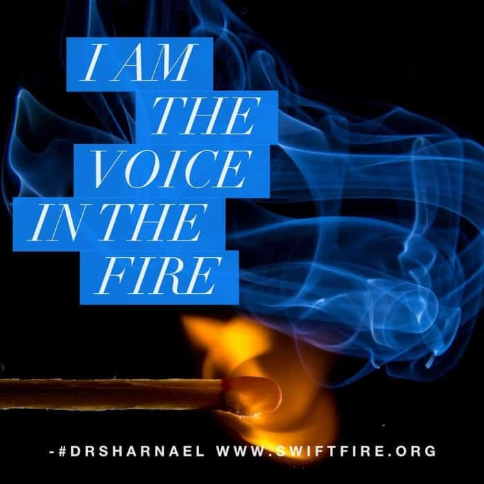 I Am the Voice 700x700