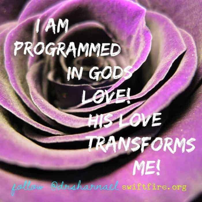 I am programmed 700x700