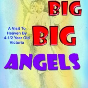 6 big big big angels 1